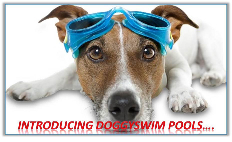 Doggyswim Hydro pools